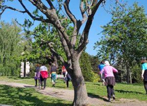 Gym nature marche dans le parc